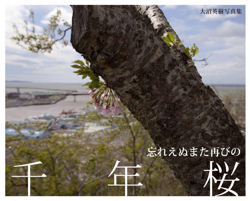 あれから1年、被災地の桜はどうしているか!? 反響を呼んだ『それでも咲いていた千年桜』の著者は、また再び桜に会いにでかけた。 2011年春、牡蠣(かき)の筏(いかだ)を纏(まと)い、 鬼の形相をしていた一本桜に出会った。 その樹の下で一夜を明かしながら「被災地の桜の記録を残そう」と誓った著者は、 その年の夏、秋、冬、そしてめぐった春に再びその樹の下を訪れた。 花は少なかったけれど、筏は取り払われ、精一杯生きようとしていた。 だが、所によって倒れてしまった桜も、花をつけていない桜もあった。 たやすく「希望」なんて語れないと思った。 それでも生き残った桜は見事に花を咲かせ、人々も動きだしていた。 また再び、桜の樹の下に人々が集い語り合うことを祈らずにはいられなかった。
